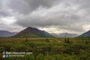 Some of the beautiful landscape in Denali National Park.