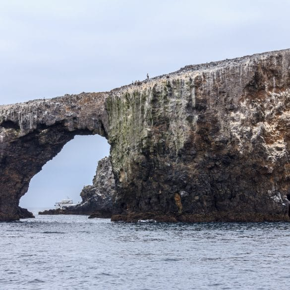 Arch Rock off Anacapa Island in the Channel Islands National Park off Oxnard, CA