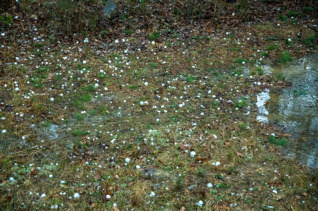 Hail stones covering the ground