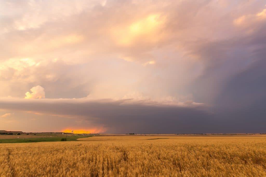 Waynoka Storm